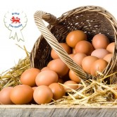 Lion Quality Large Eggs (15 Dozen)
